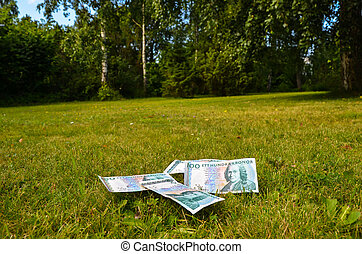 Bank notes in garden