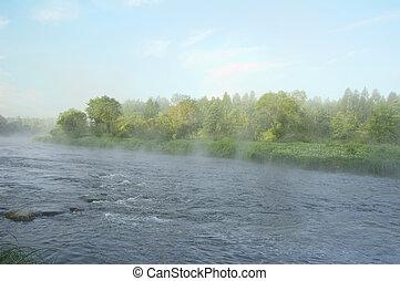 bank, vroege morgen, rivier