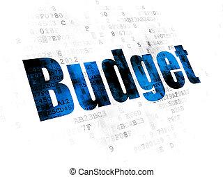 Banking concept: Budget on Digital background