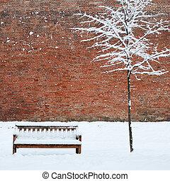 bankje, en, eenzaam, boompje, bedekt, door, sneeuw