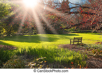 bankje, in het park, op, ondergaande zon
