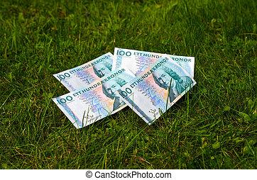 Banknotes at lawn