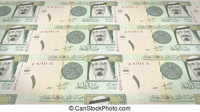 Banknotes of fifty Saudi riyals of Saudi Arabia, cash money, loop