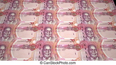 Banknotes of twenty pulas of Botswana, cash money, loop -...