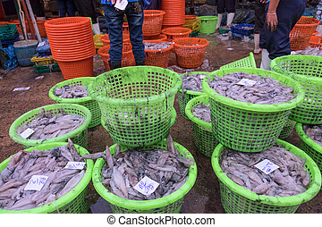 Sell squid at a street market