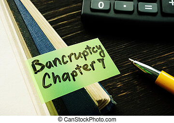Bankruptcy chapter 7 bookmark in the book.