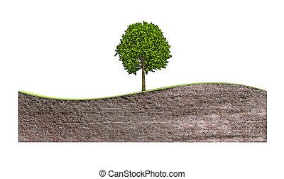 bankstel, golf, boompje, grond