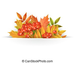 Banner, Autumn background or template card