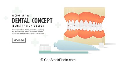 Banner Dentures model and Tooth brush and toothpaste illustration vector on white background. Dental concept.