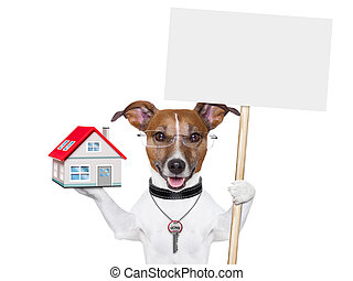 banner dog home and key - dog holding an empty placard with...