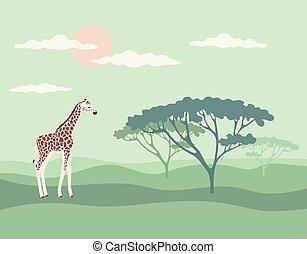 banner giraffe savannah vector