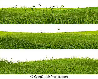 Banner of abstract meadow grass. - Horizontal banners of...