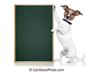 banner placeholder dog  - banner placeholder dog