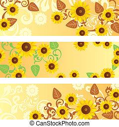 banner, satz, sonnenblume
