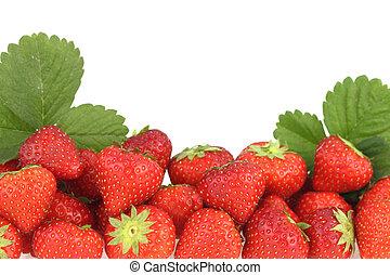 banner, von, frisch, reif, erdbeeren