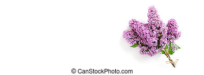 Banner with bouquet of lilac flowers on a white background.