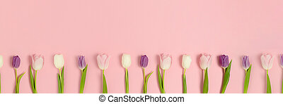 Banner with frame made of tulip flowers on a pink pastel background.