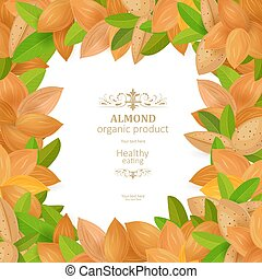 banner with frame of tasty almonds on white background for your
