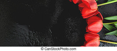 Banner with Fresh red tulips on black background. A bouquet of spring flowers, Beautiful greeting card.
