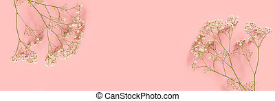 Banner with gypsophila flowers on a pink background.