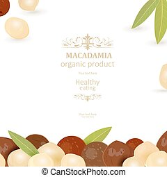 banner with macadamia on white background for your design