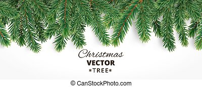 Banner with vector christmas tree branches and space for...