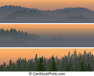 Banners of misty coniferous wood.