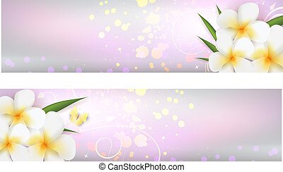 Banners with plumeria flowers