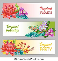 Banners with Thailand flowers. Tropical multicolor plants, leaves and buds