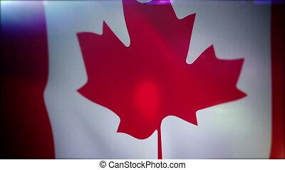 """bannière, backdrop"""", """"flapping, noir, canadien"""