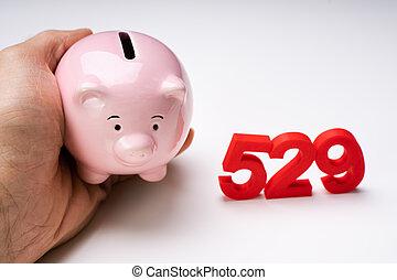 banque, porcin, possession main, nombre, humain, 529