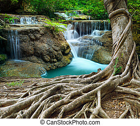 banyan tree and limestone waterfalls in purity deep forest...