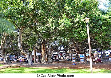 Banyan Tree, Lahaina, Maui - The famous Banyan Tree in the...