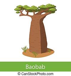 Baobab cartoon tree. Single illustration on a white...