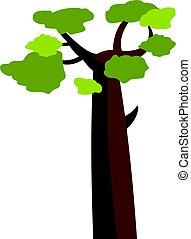 baobab, isolé, icône