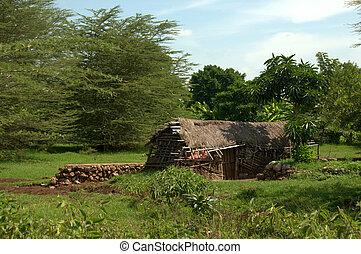 barak, afrykanin
