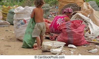 baraque, encaisseur, famille, déchets, asiatique