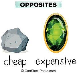 barato, costoso, palabras, contrario