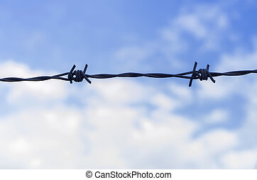 Barb wire fence and blue sky