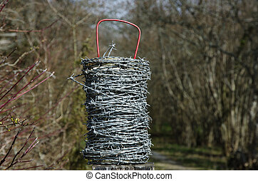 Barb wire roll with a natural background of blurred trees ...