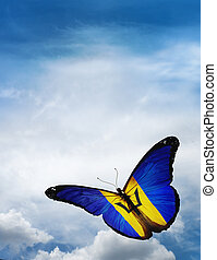 Barbados flag butterfly flying on sky background