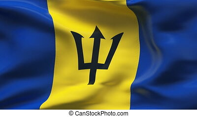 BARBADOS  flag in slow motion