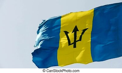 Barbados flag is fluttering in wind