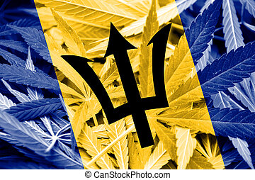 Barbados Flag on cannabis background. Drug policy....
