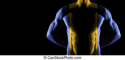 Barbados flag on muscled male torso with abs
