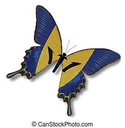 barbados läßt, auf, papillon