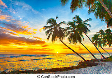 Barbados - Beautiful sunset over the sea with a view at...