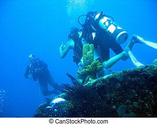 Barbados Wreck
