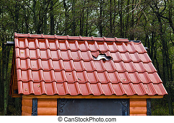 Barbarism: a hole in a new roof