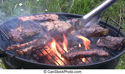 Barbecue - Meat on a Barbecue